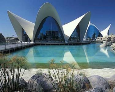 Congreso Neuropsicología en Valencia